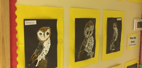 Some of the amazing art works created by our pupils with Amanda Wright(artist).